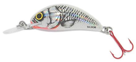 Salmo Hornet 3,5 cm, Silver White Shad!