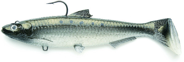 Castaic Sbs Sardine 17.8 cm (12 available colours) - Green Shad
