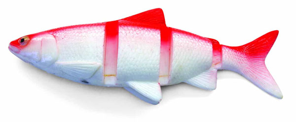 """Castaic Swimmin' Cisco 10"""" (2 options) - Red Shad"""