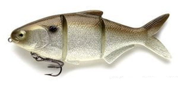 Castaic Platinum Series (6 options) - Gizzard Shad