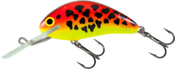 Salmo Hornet 4 cm, USA colours! (9 options) - Uv Red/Gold Dalmation