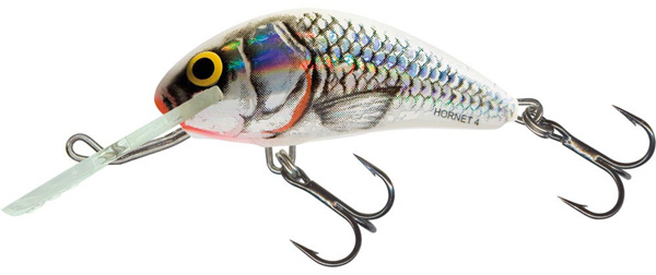 Salmo Hornet 6 cm Floating (9 options) - Silver White Shad (SWS)
