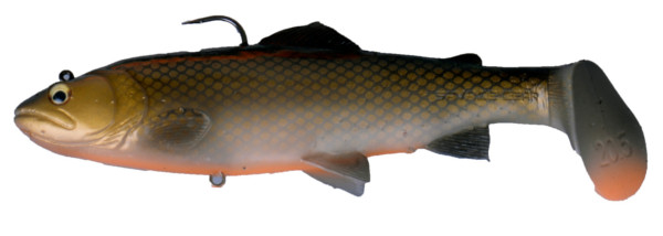 Savage Gear 3D Trout Rattle Shad 27.5cm - Dirty Roach