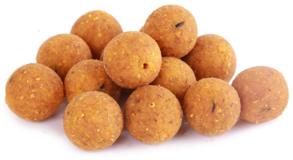 5 kg Ready-Made Q-Boilies in 15 or 20 mm - Scopex Cream