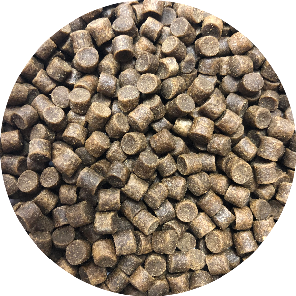 Carp Pro Feed Pellets 6 mm - Plus